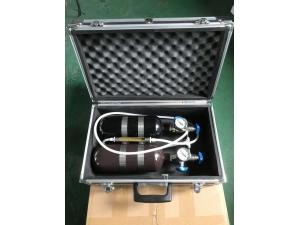 AP5甲烷传感器校验仪(1L)