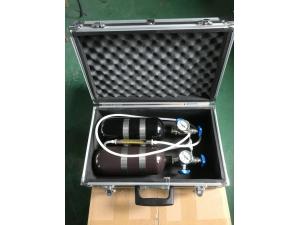 甲烷氧气标校仪(1L)